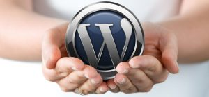 Servicio Mantenimiento WordPress